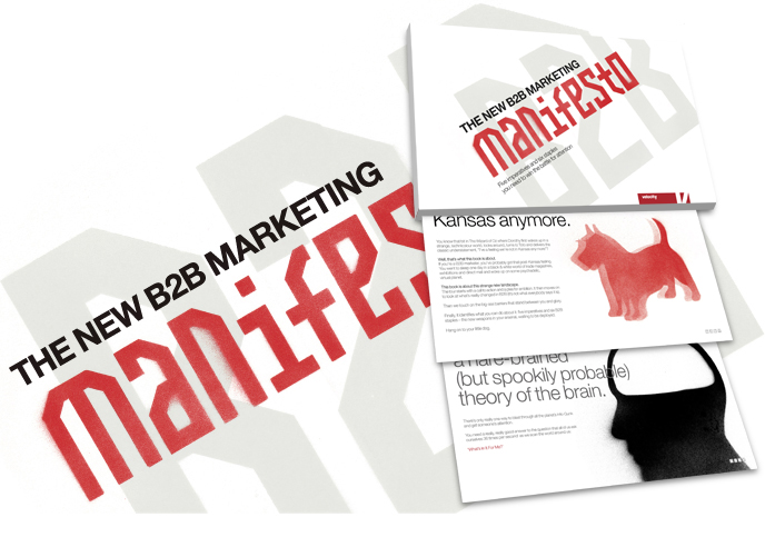 B2B Marketing Manifesto image